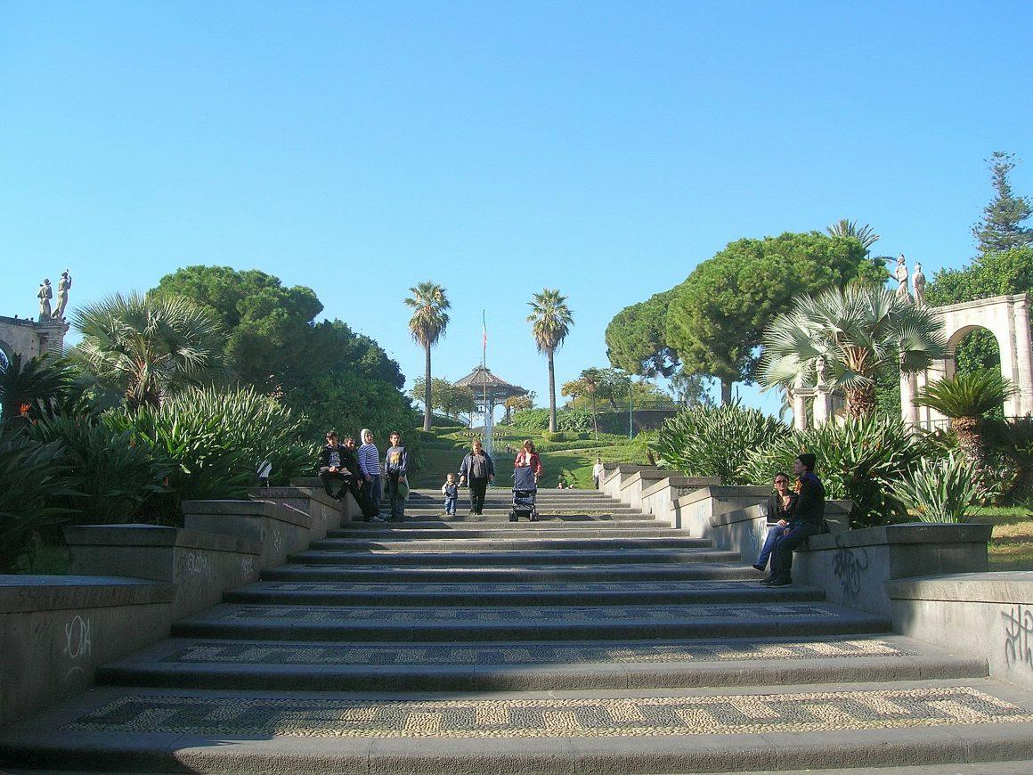 Bellini garden